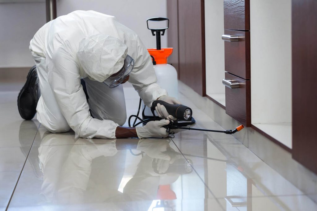 Covid-19 Calgary Business Cleaning