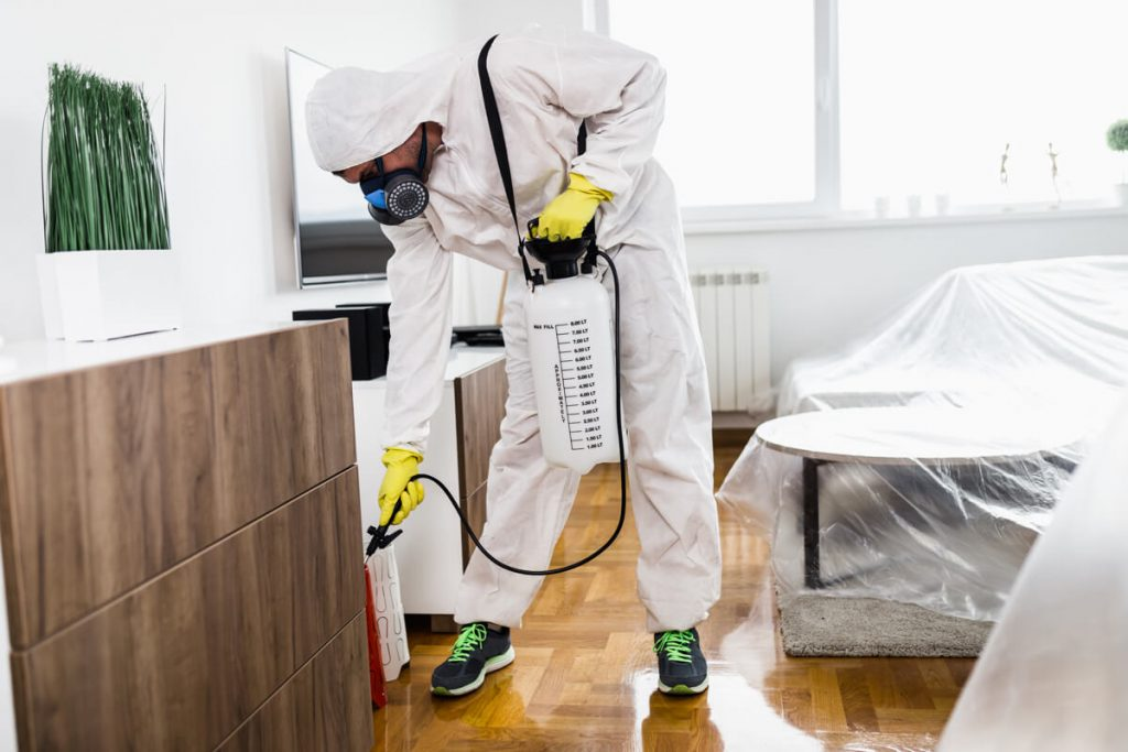 Covid-19 Calgary Home Cleaning